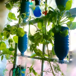 Edible hydroponic garden, 2012